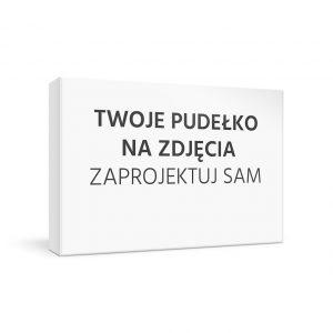 mini_BOX_001_PL_ZDJECIA_s2